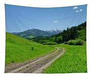 Lane View Of Crazy Mountains Tapestry