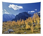 Larch Trees From The Saddleback Trail Tapestry