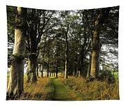Larchill Arcadian Garden, County Tapestry
