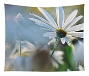 Late Sunshine On Daisies Tapestry