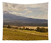 Lavender Farm Panorama Tapestry