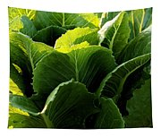 Layers Of Romaine Tapestry