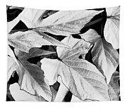 Leaf Study In Black And White Tapestry