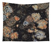 Lichen Abstract Tapestry