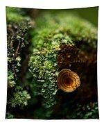 Lichen And Fungi 1 Tapestry