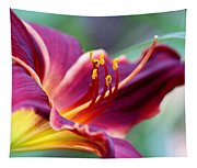 Lily - Hardy Tapestry