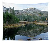 Lily Lake Tapestry