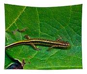 Lined Salamander 2 Tapestry
