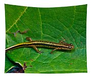 Lined Salamander 3 Tapestry