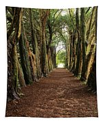 Lismore, County Waterford, Ireland Tapestry