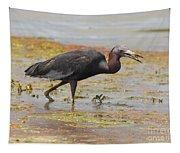 Little Blue Heron In Swamp Tapestry