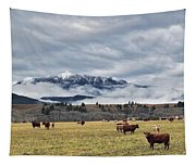 Livingstone Range And Pastureland Tapestry