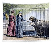 London Zoo, 1891 Tapestry