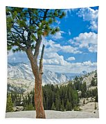 Lone Pine At Half Dome Tapestry
