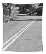 Long And Winding Road Bw Tapestry