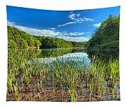 Long Branch Lake Marsh Tapestry