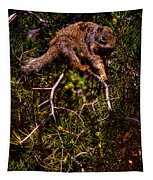 Looking For Nuts Tapestry