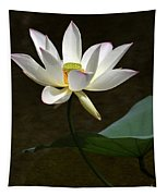 Lotus Beauty Tapestry