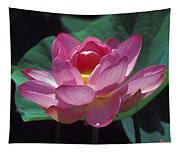 Lotus--secrets Within 24k Tapestry
