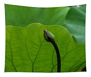 Lotus-sheltering The Future Dl032 Tapestry