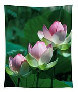 Lotus--stepping Stones 24p Tapestry