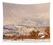 Low Winter Storm Clouds Colorado Rocky Mountain Foothills 6 Tapestry