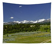 Lower Cottonwood Road Tapestry