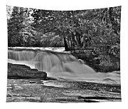 Lower Tahquamenon Falls 6140b Tapestry