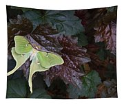 Luna Moth 1 Tapestry