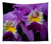 Maddie's Orchid Tapestry