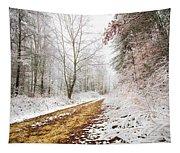 Magic Trail Tapestry