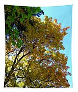 Magnificent Maples Tapestry