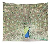Majestic Peacock Tapestry