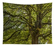 Majestic Tree Tapestry