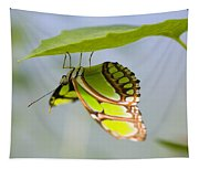Malachite Butterfly On Leaf Tapestry
