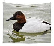 Male Canvasback Duck  Tapestry