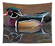 Male Wood Duck Tapestry