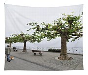 Man With Dog Walking On Empty Promenade With Trees Tapestry