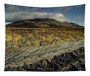 Marsh On The Landscape, Connemara Tapestry