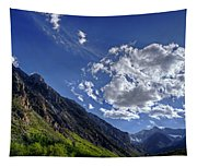Mcgee Creek Canyon Tapestry