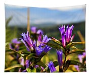 Meadow And Mountains Tapestry