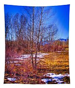 Melting Snow In South Platte Park Tapestry