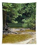 Merced River Yosemite National Park Tapestry