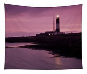 Mew Island, Belfast Lough, County Tapestry