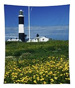 Mew Island, County Down, Ireland Tapestry