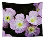 Mexican Primrose  Tapestry