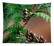 Michigan Cedar Cones Tapestry