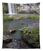 Minneopa Falls 36 Tapestry