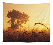 Mist In A Barley Field At Sunset Tapestry