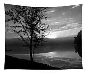 Misty Reflections Bw Tapestry